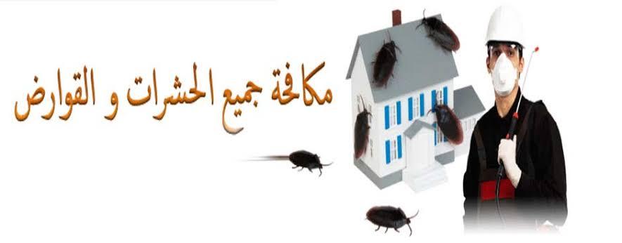مكافحة النمل الابيض والبق بالدمام
